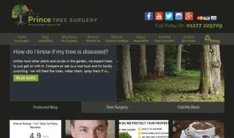Essex Tree Surgeon Loughton